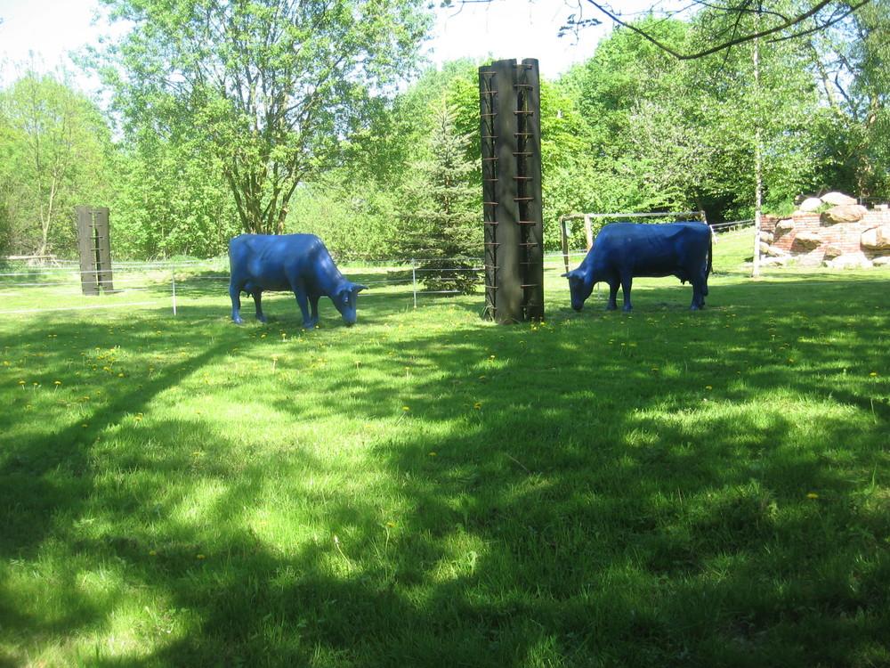 Du siehst blaue Kühe?