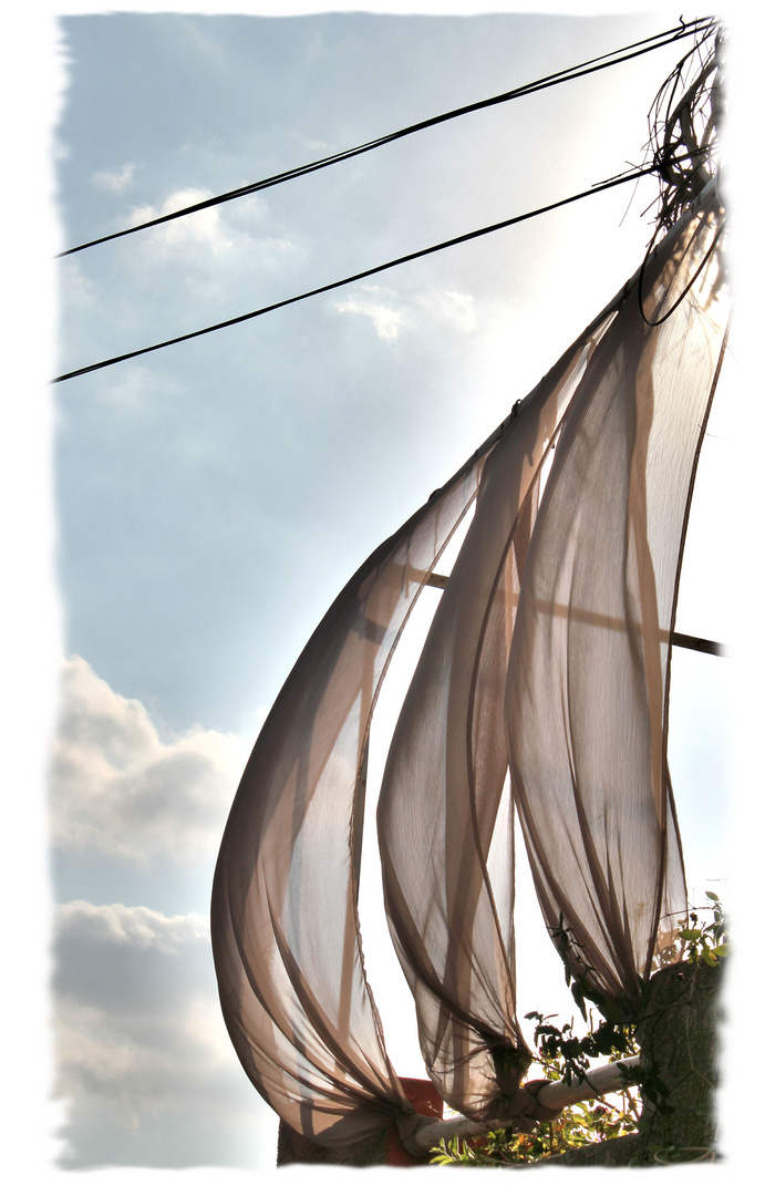 Du vent dans les voiles...
