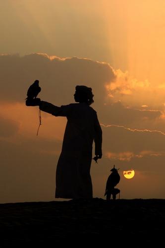 Dubai 2005. Scheich mit Falken
