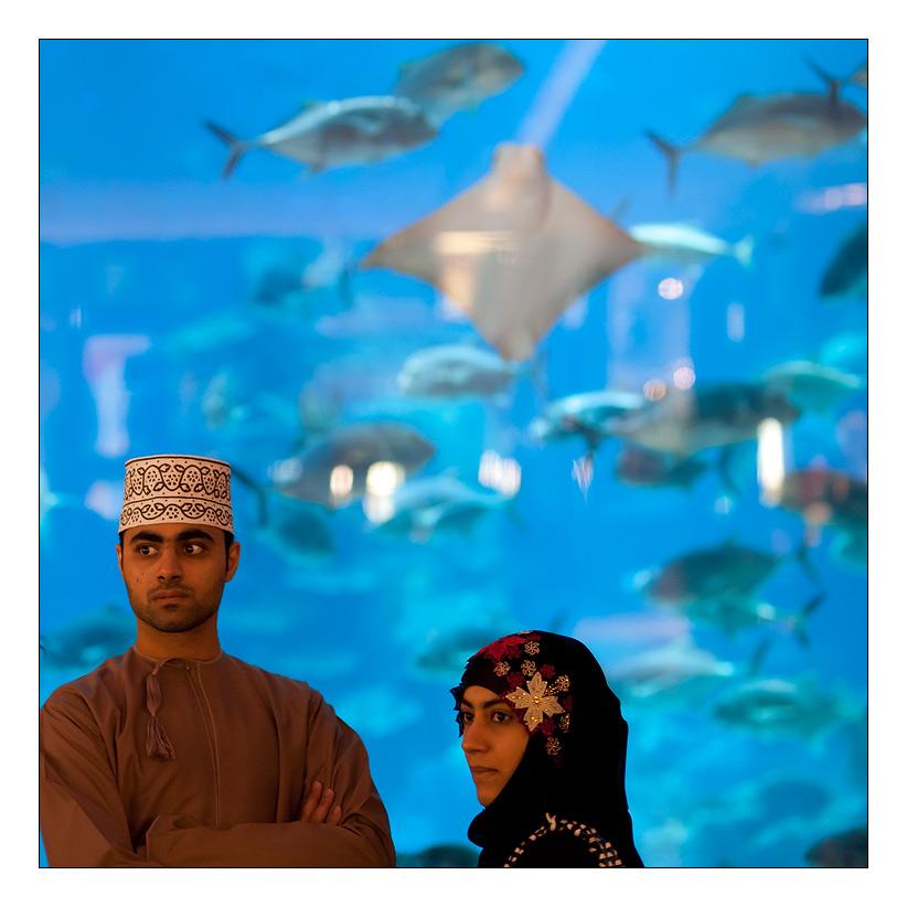 Dubai ( I )