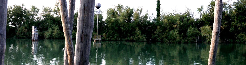 Ducs d'albe les pieds dans l'eau