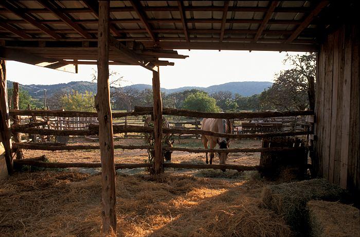 Dude Ranch 2