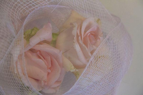 due Rose...