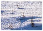 Dühnen im Schnee