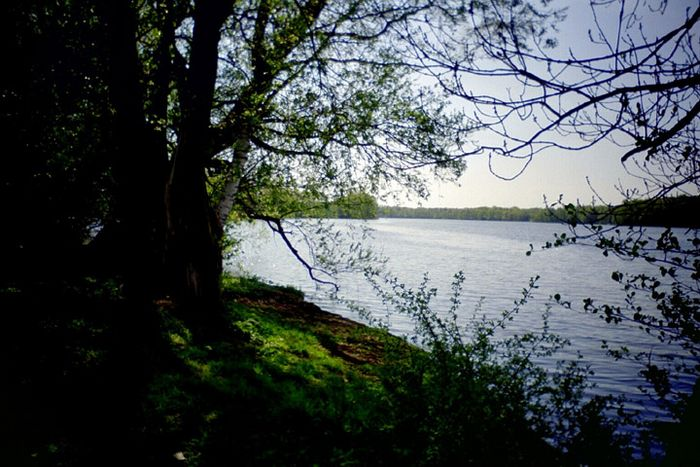 Dümmer See, Schwerin 2003