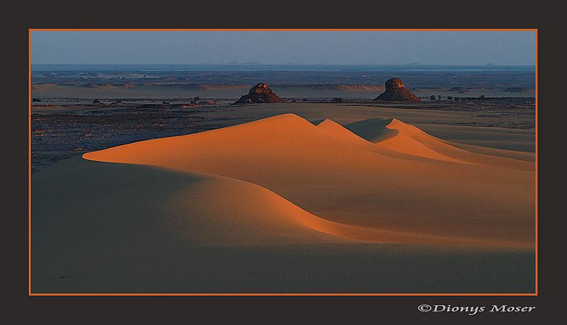 Düne im Abendlicht in der Weissen Wüste