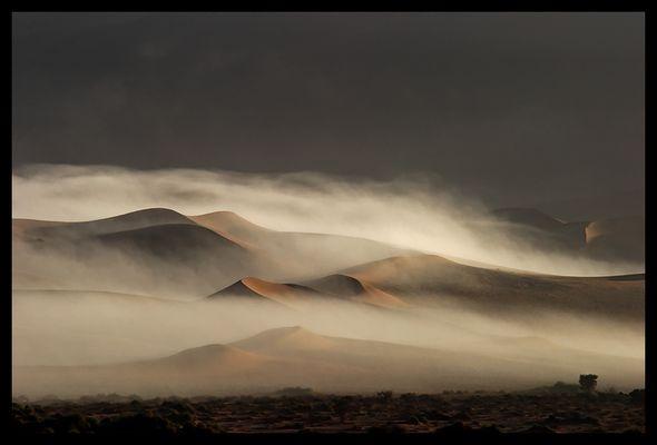 Dünen im Nebel