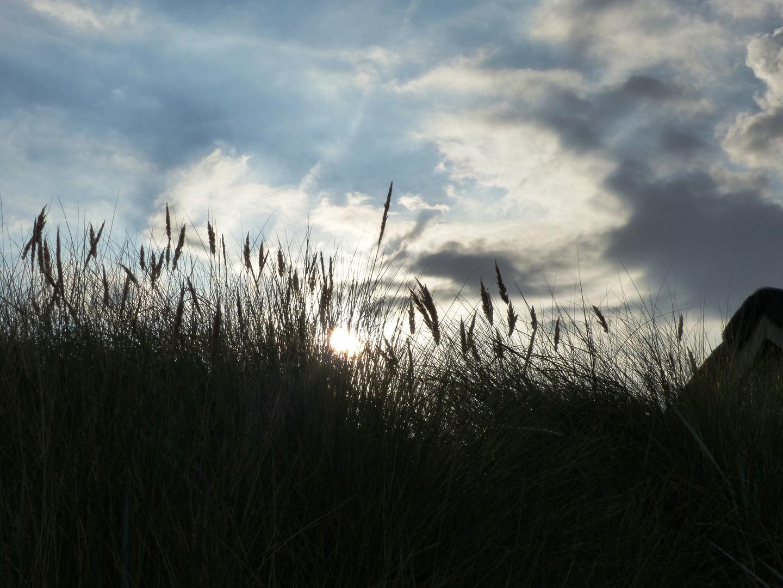 Dünen Ostsee