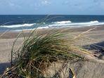 Dünen und Meer - was gibt es besseres?