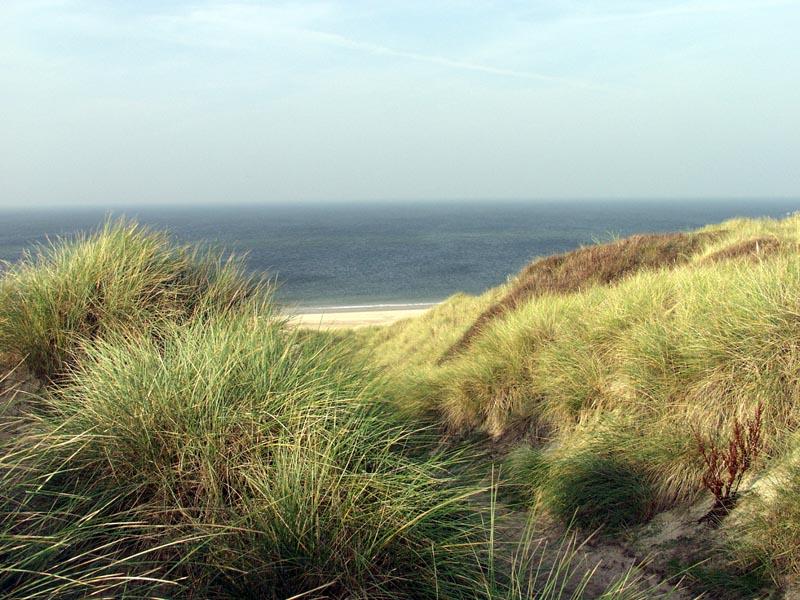 Dünen, Wind und Meer
