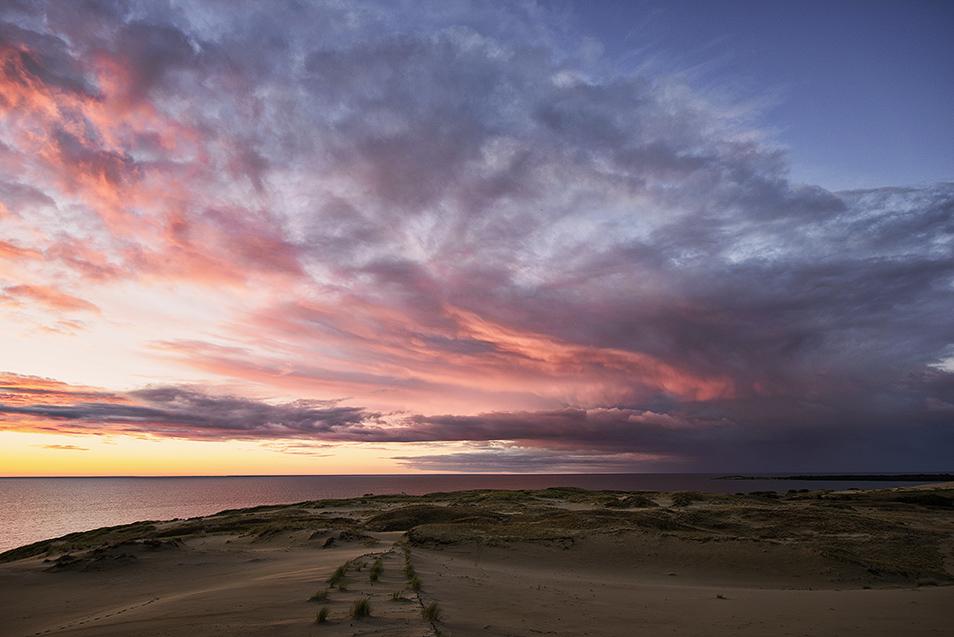 Dünen|Landschaft