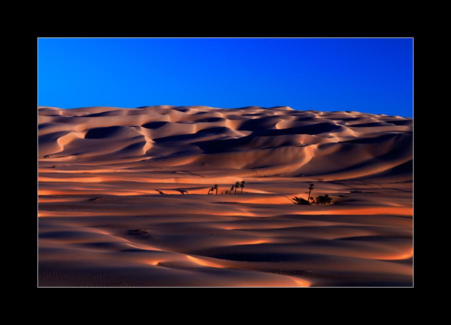 Dünenlandschaft I