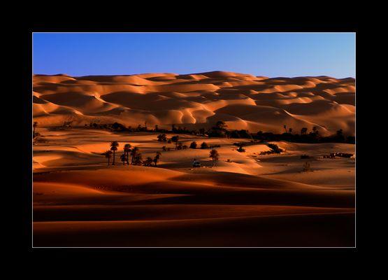Dünenlandschaft IV