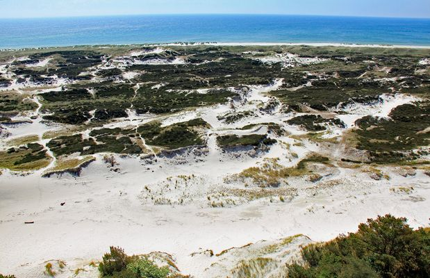 Dünenlandschaft von Dueodde (1)