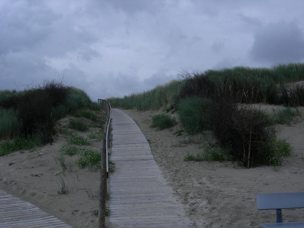 Dünenübergang auf Langeoog