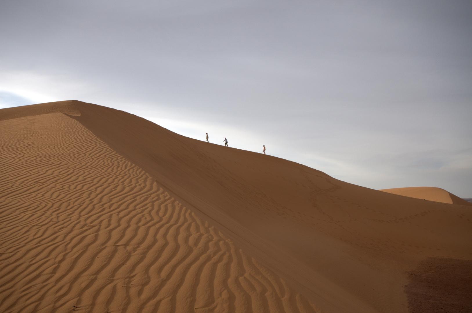 Dünenwanderung
