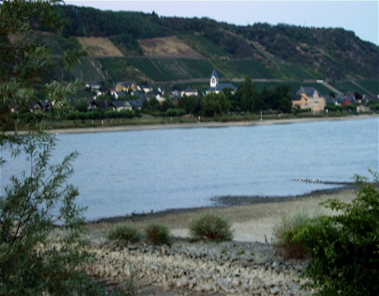 Dünner Rhein...