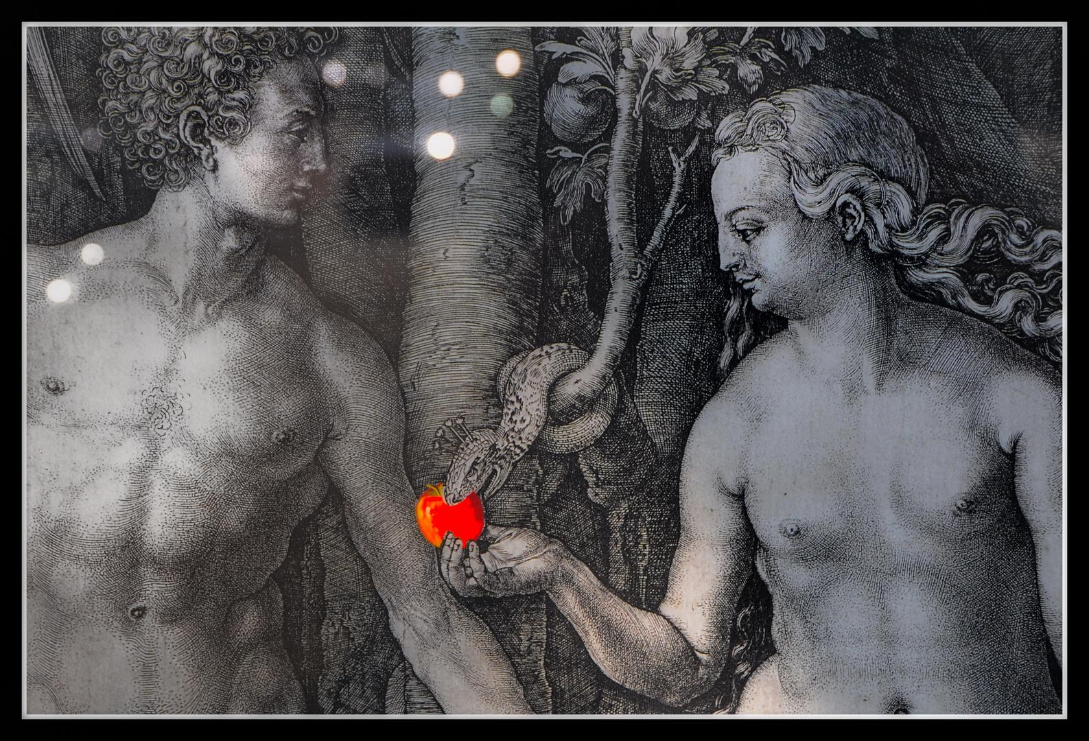 Dürer - kreativ