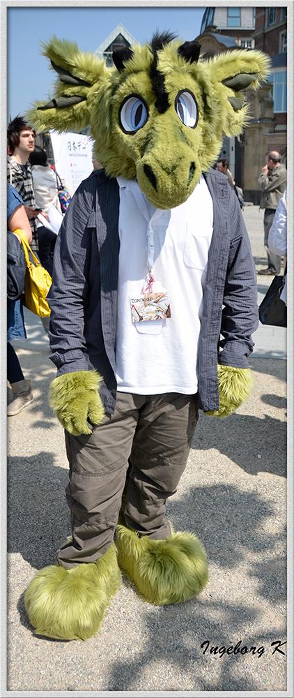 Düsseldorf - Japan-Fest 2014 - Große Augen und Ohren auf Samtpfoten