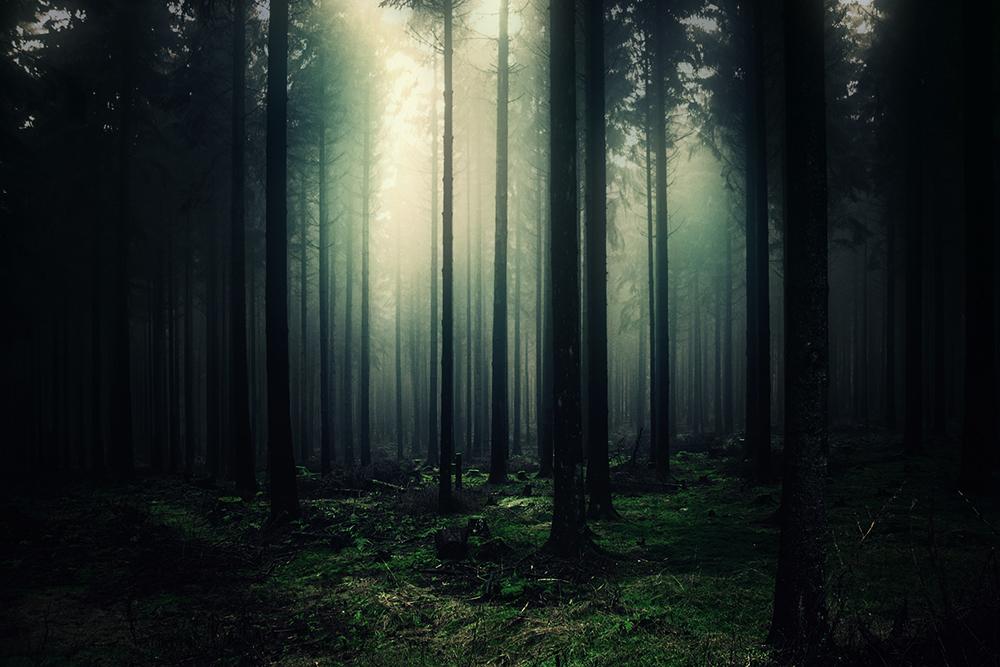Düstere Stille