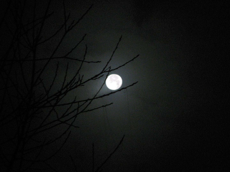 Düsterer Vollmond bei Nacht