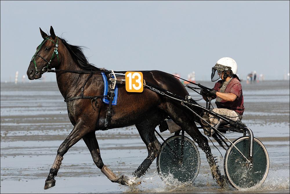Duhner Wattrennen 2010 - IV