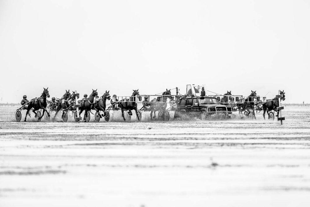 Duhner Wattrennen 2013