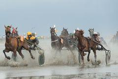 Duhner Wattrennen 2013 I