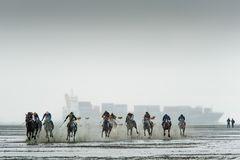 Duhner Wattrennen 2013 II
