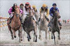 Duhner Wattrennen 2014 [IV]