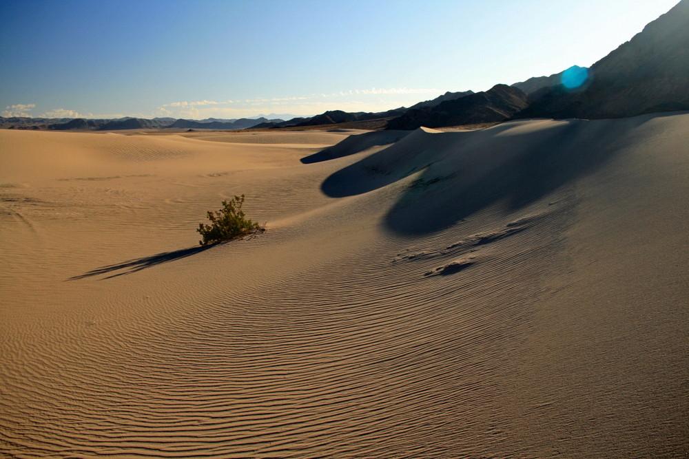 dumont little dunes 07/2009