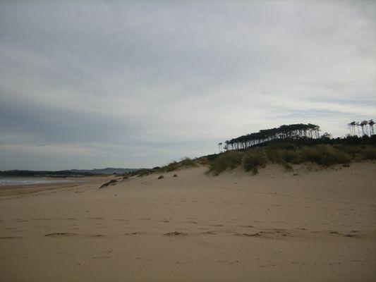 dunas de Somo, Cantabria