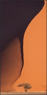 Dune 38