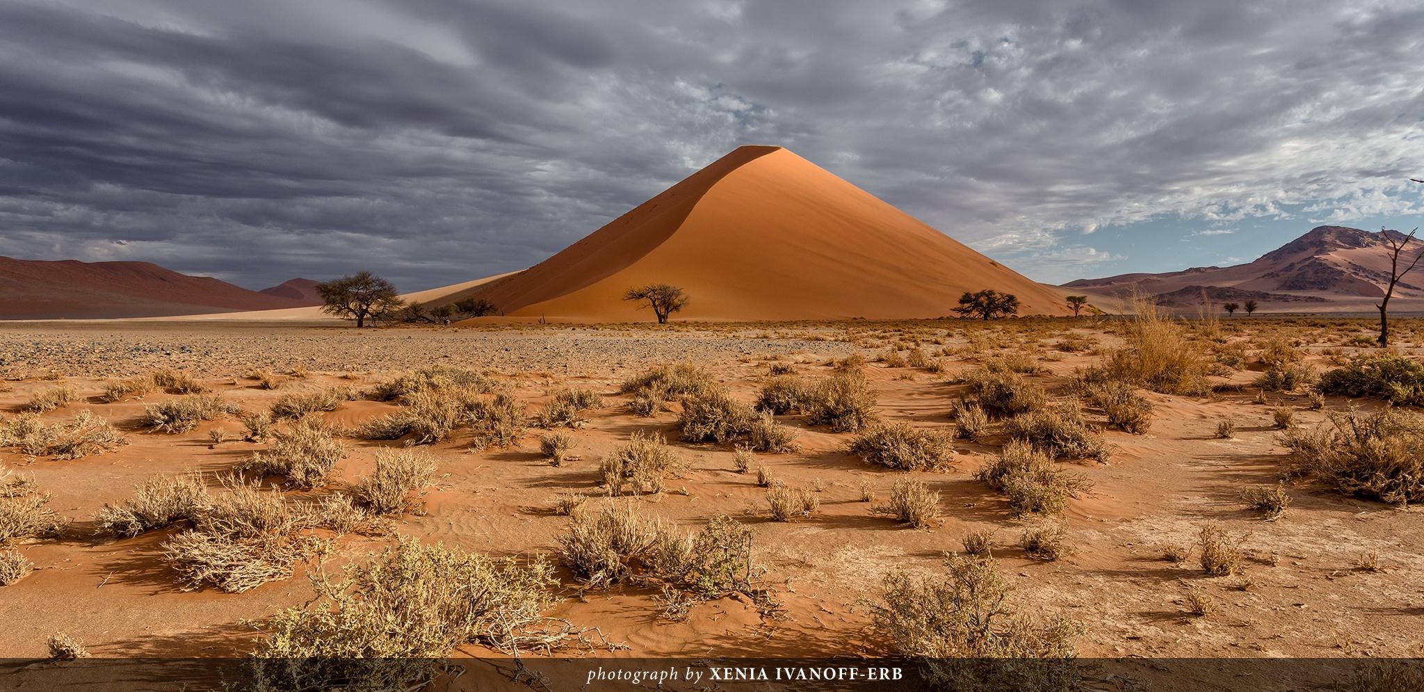 Dune 40. Tsauchab Valley, Namibia