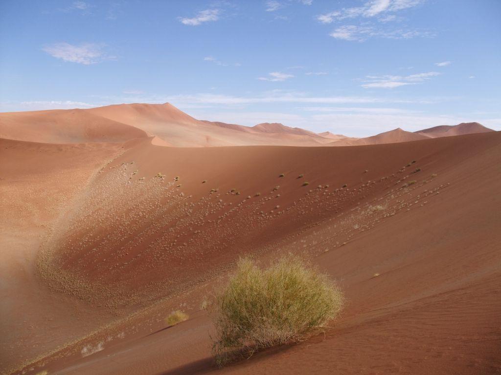 Dune at inner Sossusvlei