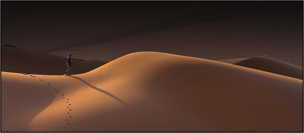 Dune callipyge