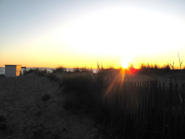 Dune ensoleillée
