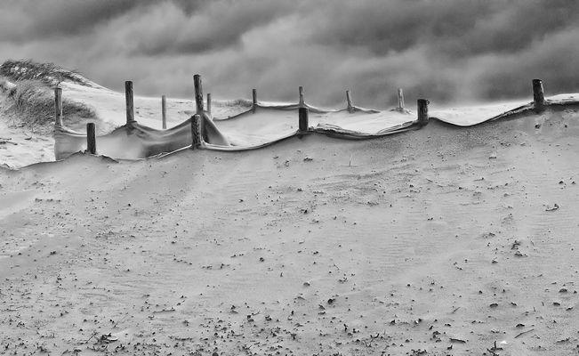 Dune et vent # 2