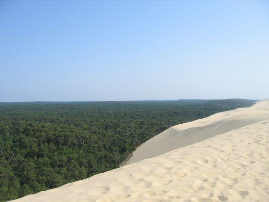 Dune Pyla