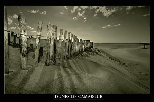 Dunes de Camargue