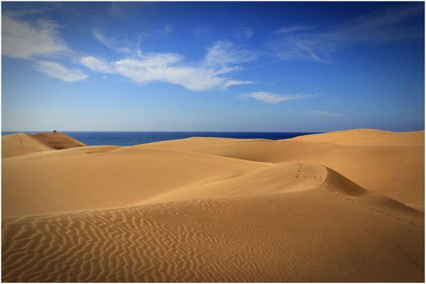 ~ dunes de maspalomas ~