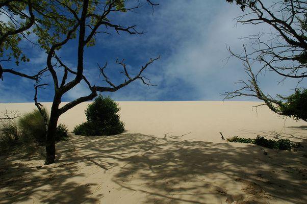 dunes de pilat, frankreich