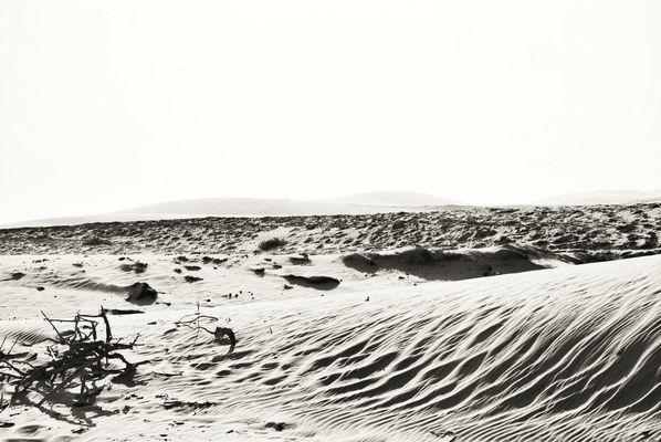 Dunes Jericoacoara 3