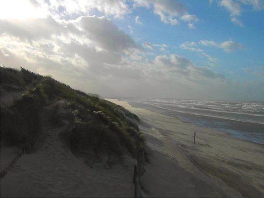 Dunes Zuydcoote