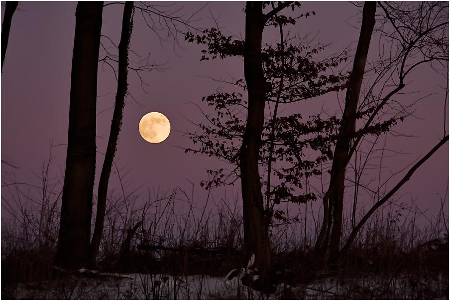 Dunkel war´s, der Mond schien helle....