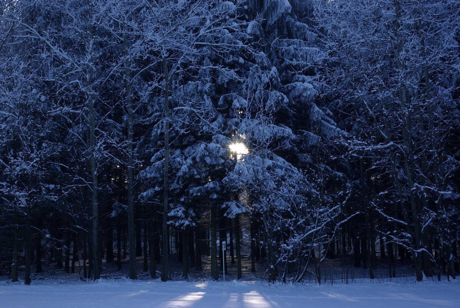 Dunkelheit in weiß