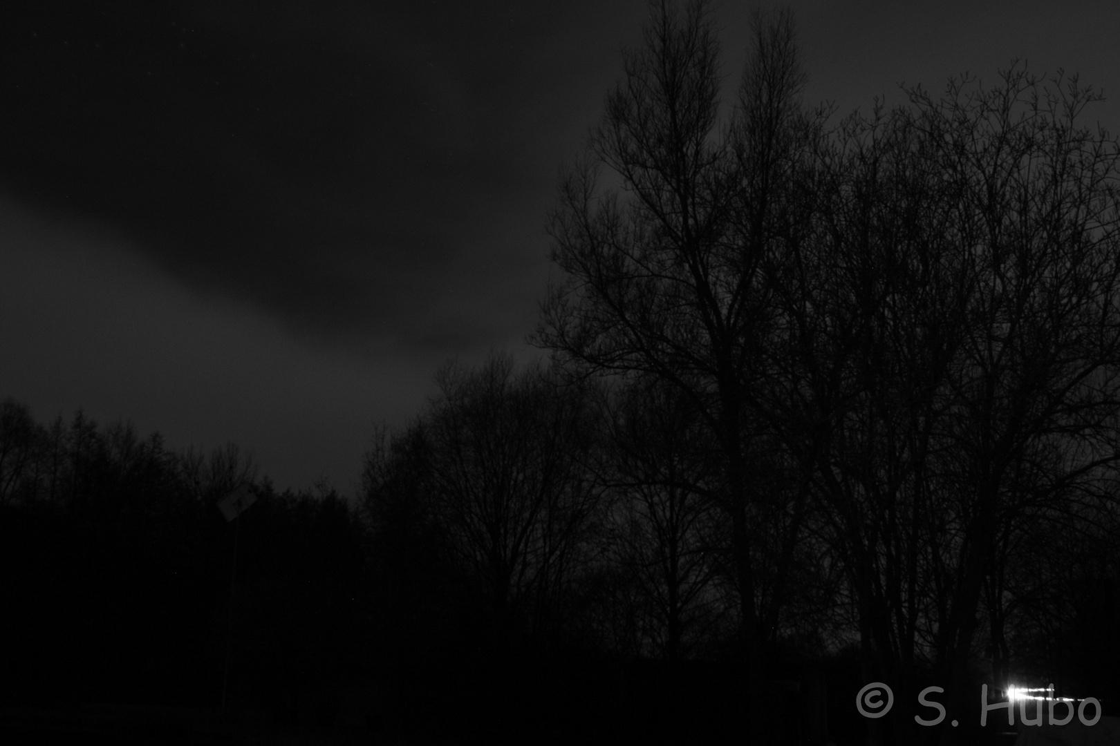 Dunkle Nacht SW01