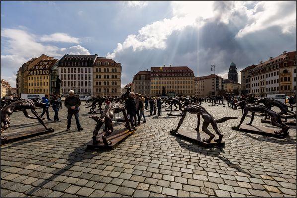 Dunkle Wolken über Dresden .