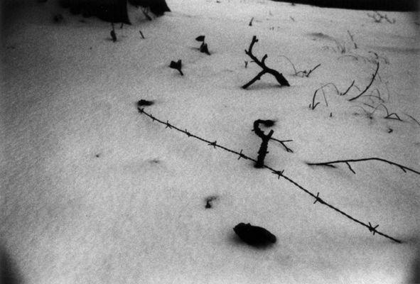 Dunkler Schnee
