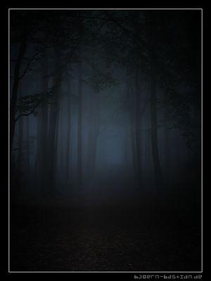 Dunkler Wald: Reloaded